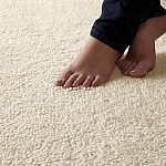 carpete-1